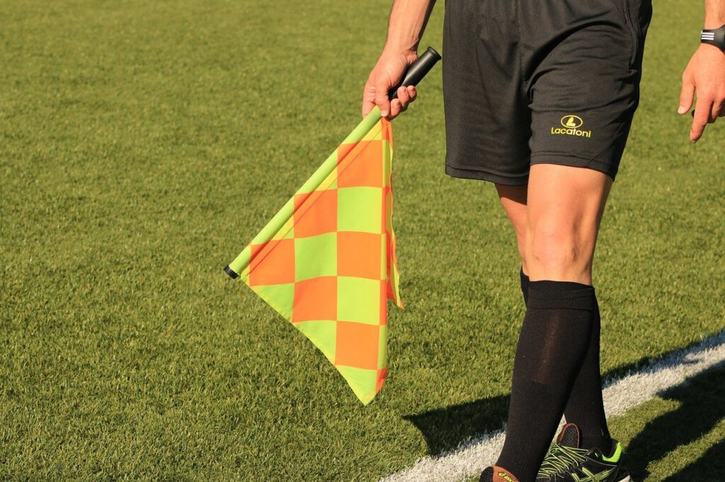 A linesman holding a flag