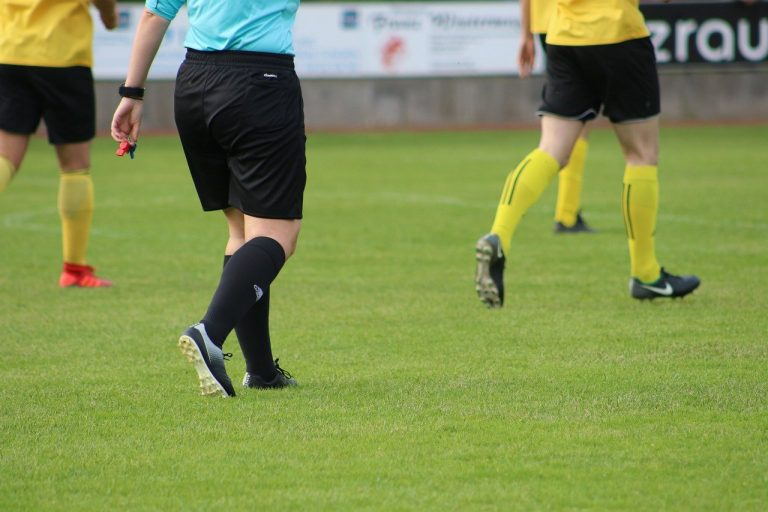 A football referee during a game
